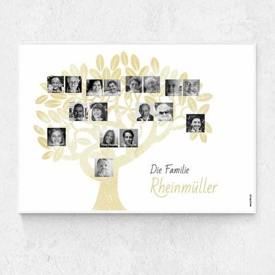 Stammbaum Poster